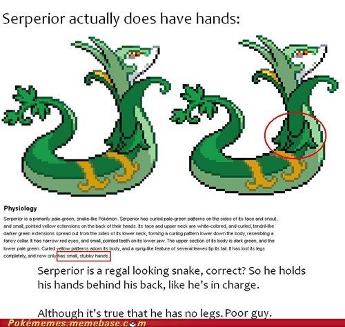 serperior regal hands - 6692438784