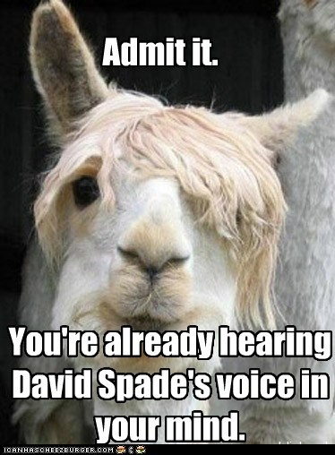 Admit it. You're already hearing David Spade's voice in your mind.