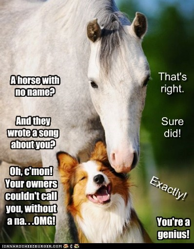 A horse with no name? That's right. And they wrote a song about you? Sure did! Oh, c'mon! Your owners couldn't call you, without a na. . .OMG! Exactly! You're a genius!