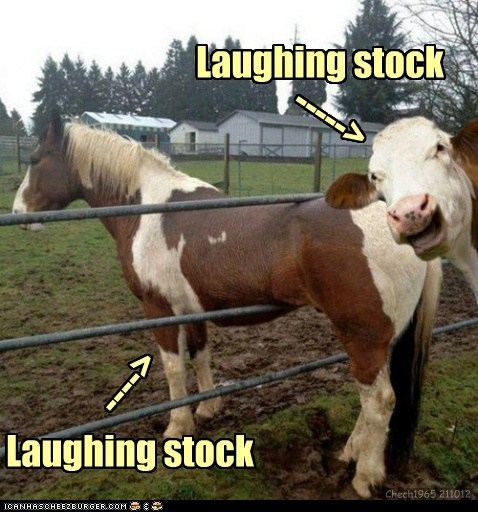 Laughing stock Laughing stock -----> ----> Chech1965 211012