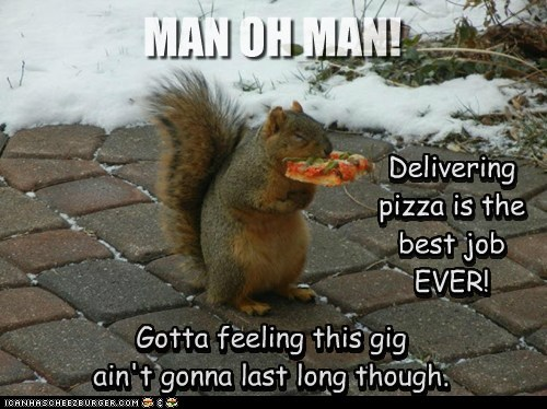 fired,pizza,best job ever,squirrel,eating,delivery