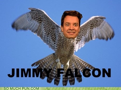 jimmy fallon,falcon,similar sounding,shoop