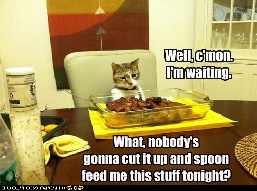 What, nobody's gonna cut it up and spoon feed me this stuff tonight? Well, c'mon. I'm waiting.
