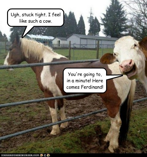Ugh, stuck tight. I feel like such a cow. You're going to, in a minute! Here comes Ferdinand!