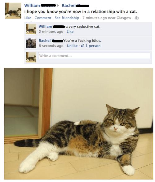 girlfriend seductive cat - 6695688192
