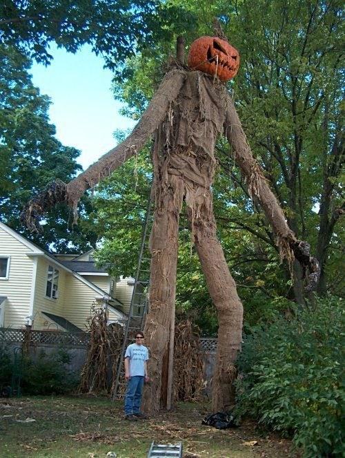 scarecrow,halloween,jack o lanterns,pumpkins