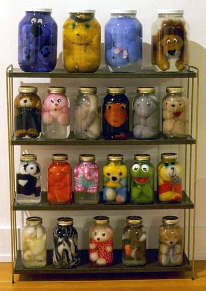 pickled,stuffed animal,jars