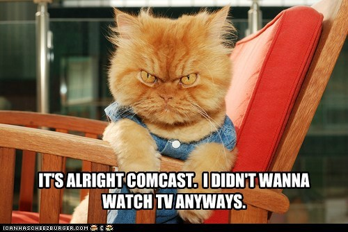 comcast cable TV angry mad Cats captions company customer service