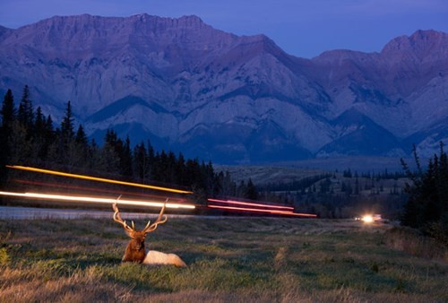 nature,camping,wildlife,landscape,mountains,exposure time,long exposure,best of week,Hall of Fame