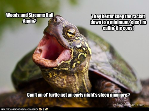 Woods and Streams Ball Again? They better keep the racket down to a minimum, 'else I'm callin' the cops! Can't an ol' turtle get an early night's sleep anymore?