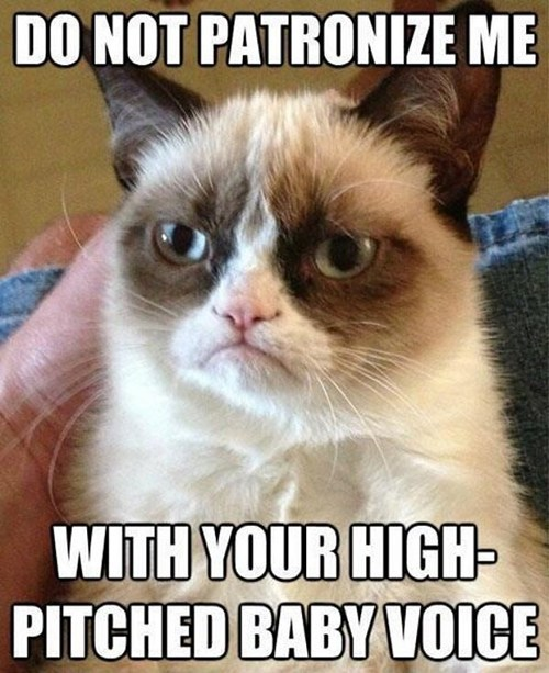 Cats captions tard grumpy Grumpy Cat baby voice talking patronizing - 6696566016