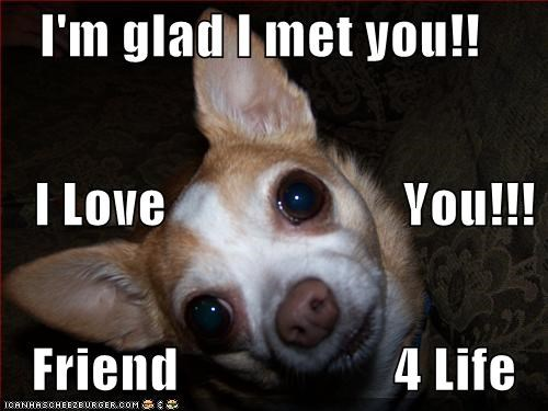 I M Glad I Met You I Love You Friend 4 Life Cheezburger Funny Memes Funny Pictures
