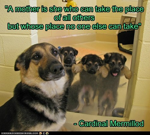 """A mother is she who can take the place of all others but whose place no one else can take"" - Cardinal Mermillod"