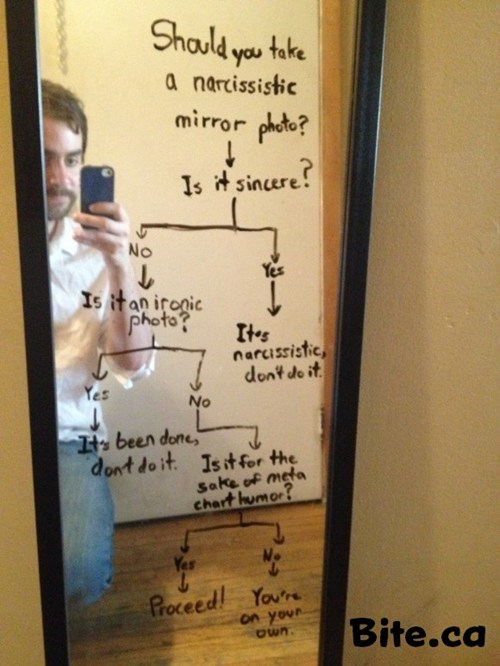 flowchart,iphone,self pic