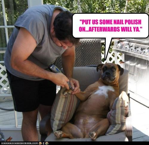 Cheezburger Image 6698770688