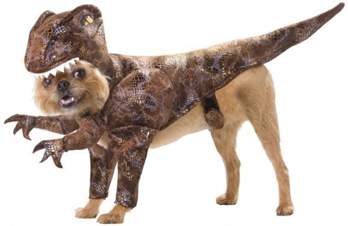dog costume Raptor dinosaurs