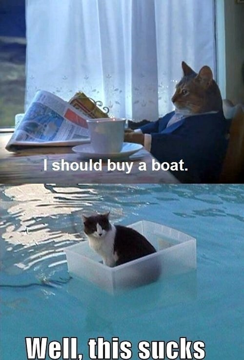 Cats,boats,mistakes,this sucks,captions,multipanel
