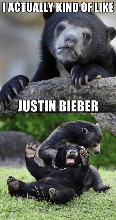 justin bieber bears fighting - 6699261952