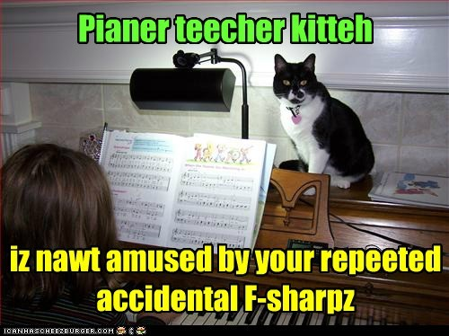 Pianer teecher kitteh iz nawt amused by your repeeted accidental F-sharpz
