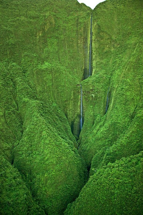green,pretty colors,waterfall,Hawaii