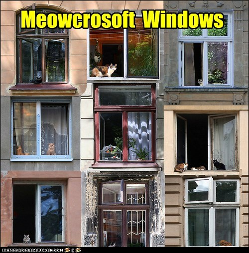 Meowcrosoft  Windows