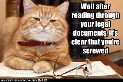 Well after reading through your legal documents, it's clear that you're screwed
