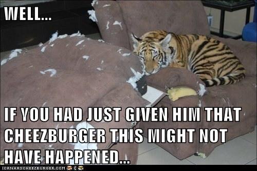 Cheezburger Image 6701569280
