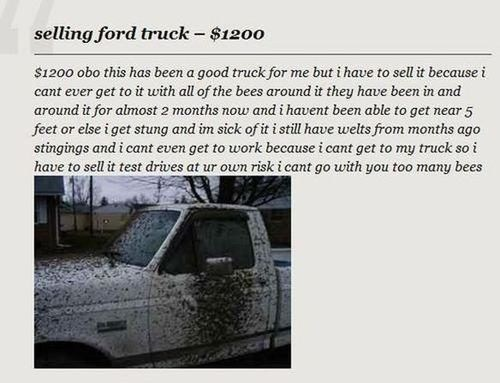 ford,craigslist,ford truck,the wicker man,nicolas cage,not the bees