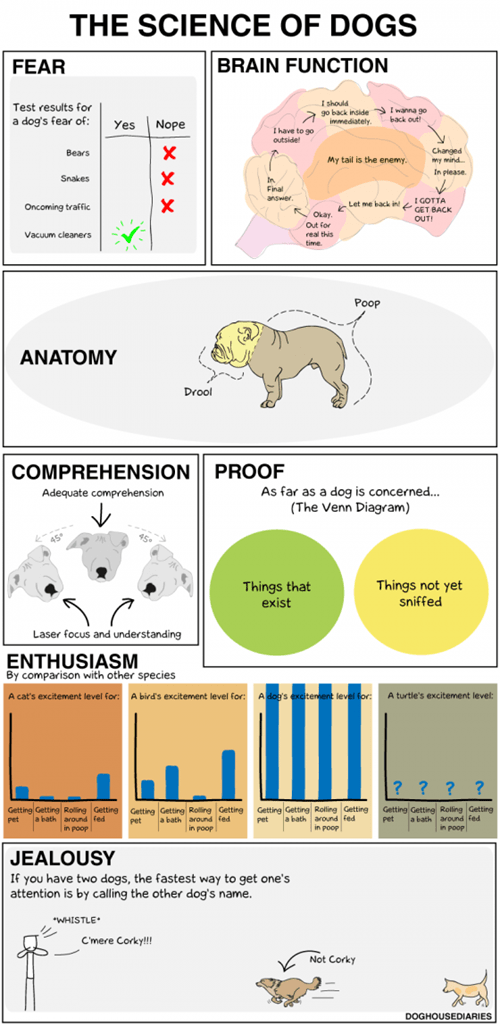 science,Fake Science,dogs,brains,charts,information,silly,the science of dogs
