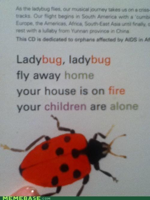 wtf,poem,ladybug