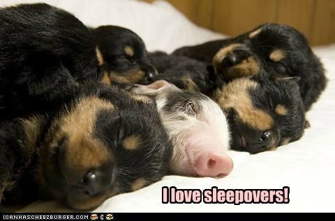 I love sleepovers!