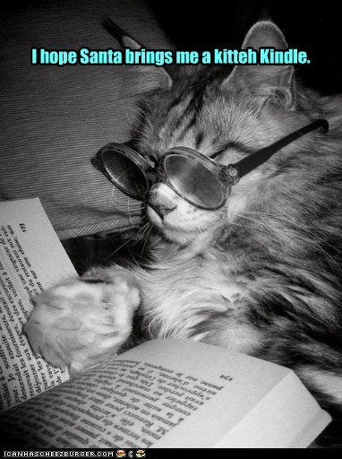 I hope Santa brings me a kitteh Kindle.