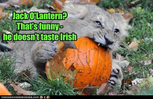 Jack O'Lantern? That's funny - he doesn't taste Irish