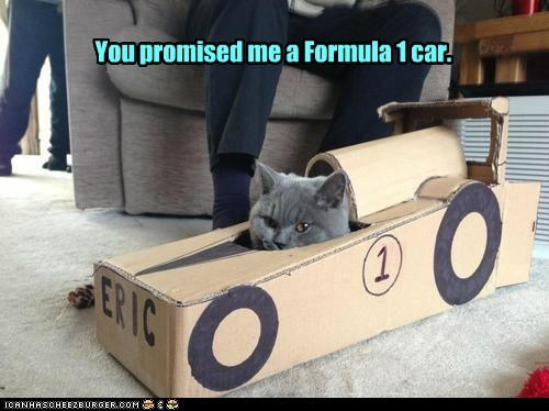 formula 1,car,racecar,Cats,captions,race,lie,present,promise