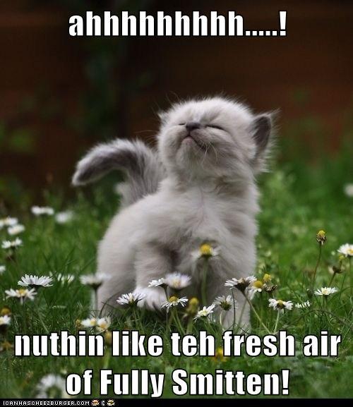 Ahhhhhhhhh Nuthin Like Teh Fresh Air Of Fully Smitten
