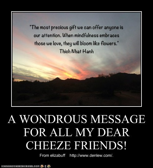 A WONDROUS MESSAGE FOR ALL MY DEAR CHEEZE FRIENDS!