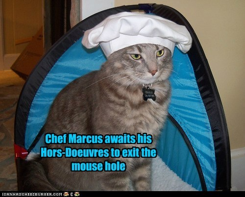 Chef Marcus awaits his Hors-Doeuvres to exit the mouse hole