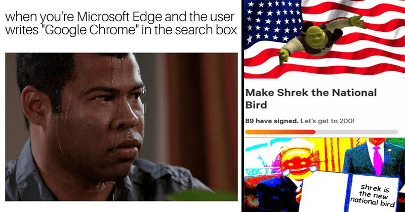 Funny ,weird and dank memes.