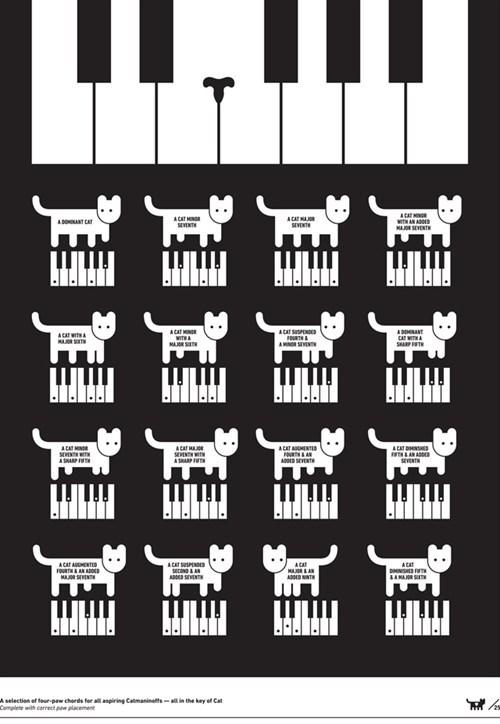 pianos Cats Keyboard Cat Music Memes art illustrations - 6705218816