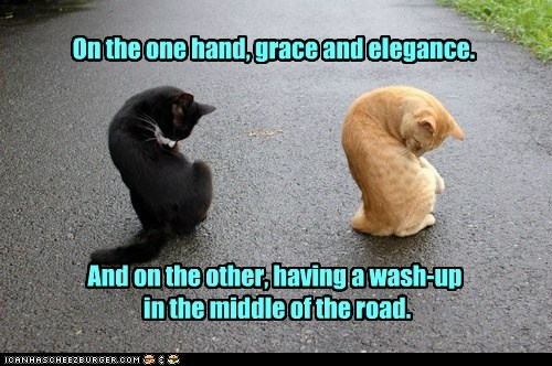 On the one hand, grace and elegance. And on the other, having a wash-up in the middle of the road.