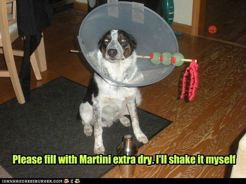 Please fill with Martini extra dry. I'll shake it myself