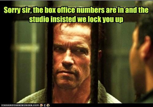 actor Arnold Schwarzenegger celeb funny - 6706243840