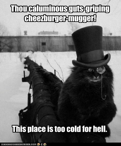 Thou caluminous guts-griping cheezburger-mugger! This place is too cold for hell.