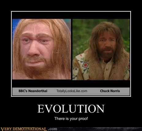 proof,evolution,cave man,chuck norris