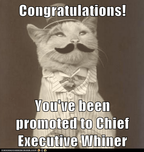 cat,mustache,dapper,whiners,suit,hat