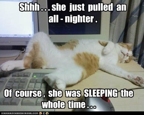 Shhh . . . she just pulled an all - nighter . Of course , she was SLEEPING the whole time . . .