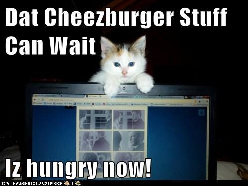 Dat Cheezburger Stuff Can Wait  Iz hungry now!