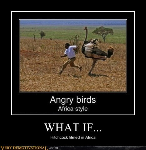 bad idea birds run ostrich - 6708123392