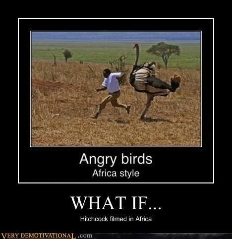 bad idea birds run ostrich - 6708123392