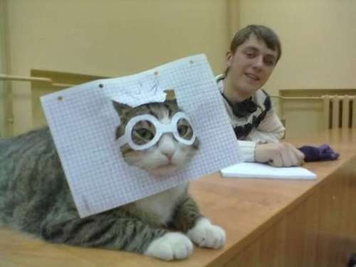 costume cat lolwut snazzy glasses einstein science graph paper hat relativity